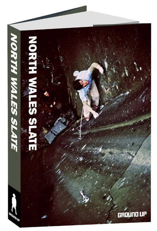 Guidebook Cover #1 - Tambourine Man, 106 kb