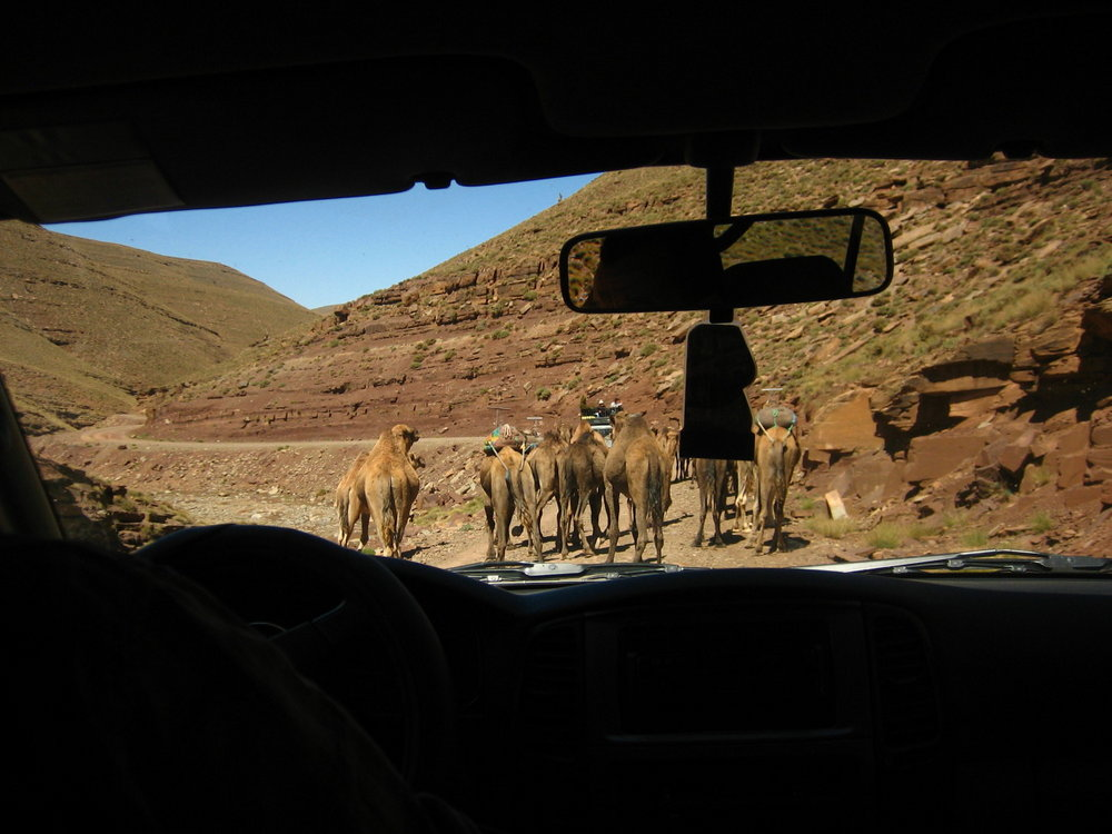 A typical traffic jam on the way to Marrakech from Zaouiat., 115 kb