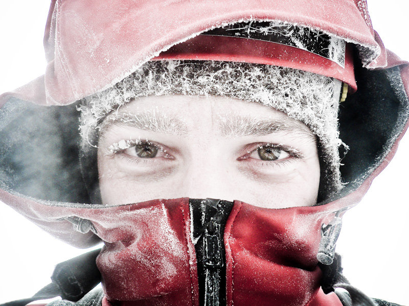 A Cold Self Portrait, 149 kb
