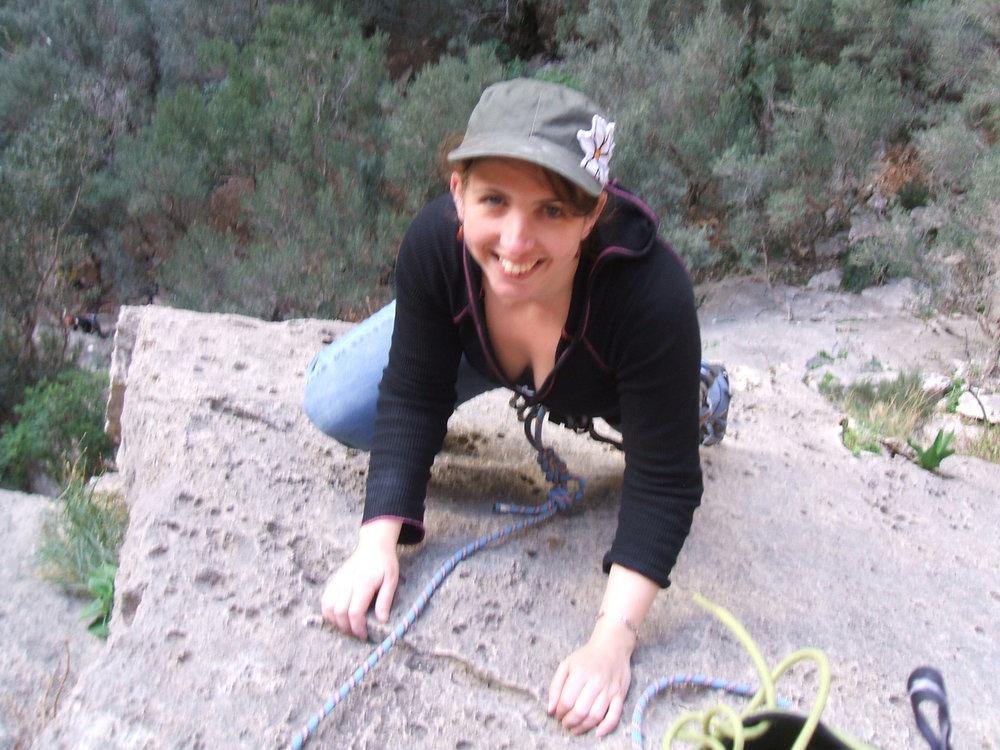 climbingrose, 155 kb
