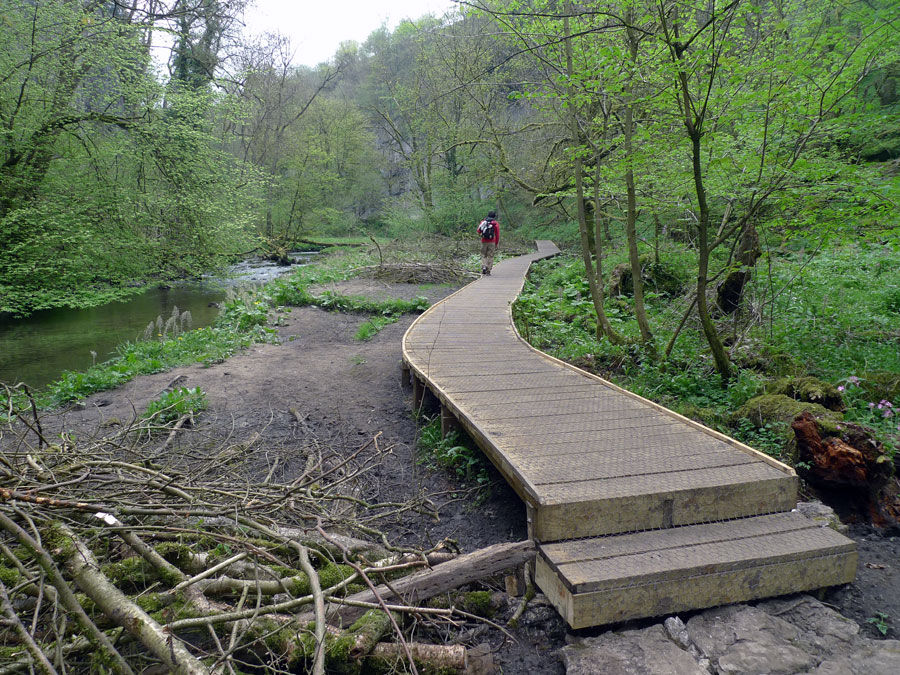 The new boardwalk in Chee Dale, 227 kb