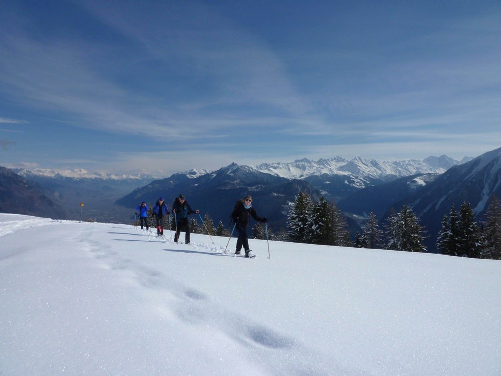 A day out on snowshoes in Switzerland , 84 kb