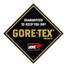 Gore-tex Logo, 16 kb
