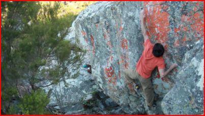 Paul Robinson on Orange stain project (video still), 31 kb