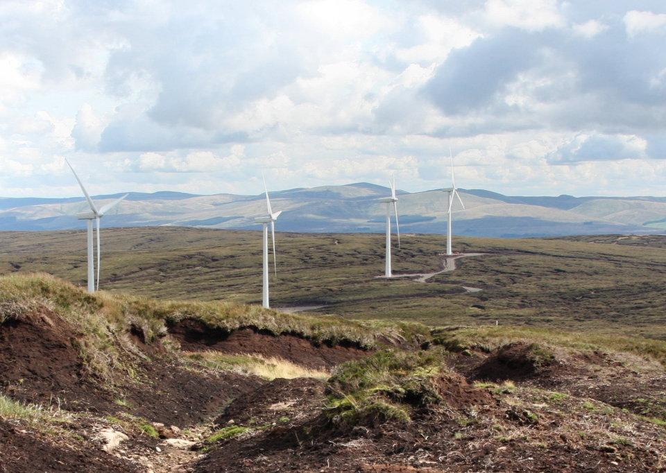 Wind farm, 145 kb