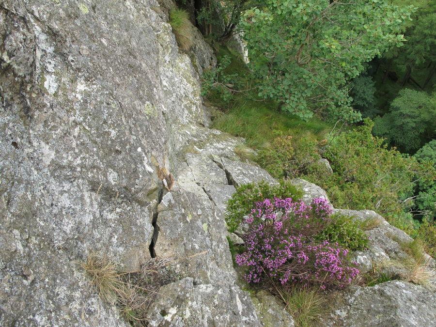 Castle Rock of Triermain North Buttress 7, 212 kb