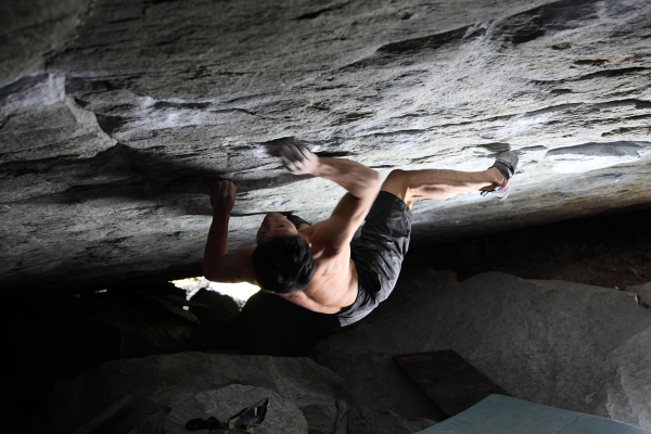 Dai Koyamada on In search of time lost, 8C, Magic Wood, 92 kb