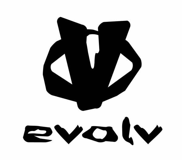 Evolv Logo, 14 kb