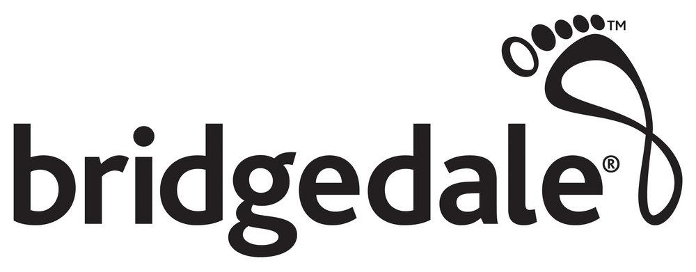 Bridgedale Logo, 46 kb