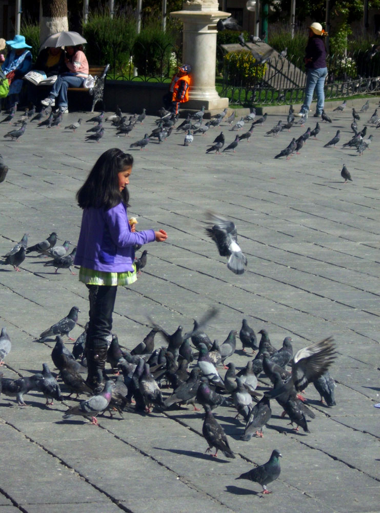 Girl feeding the pigeons in La Paz, Bolivia., 196 kb