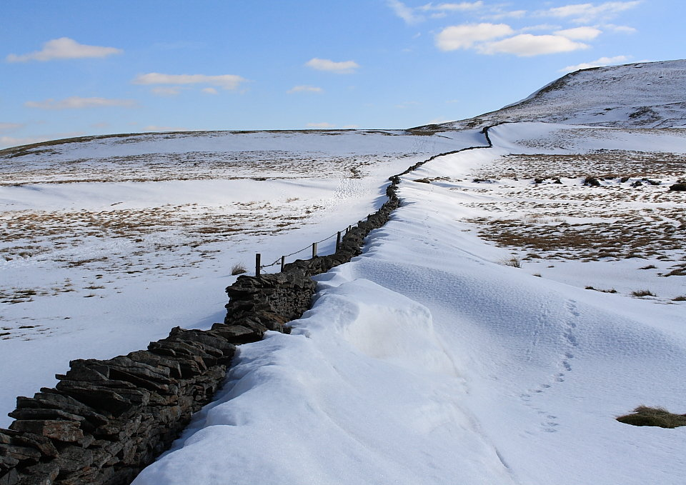 Swarth Fell: Right of the wall it's National Park, left it isn't, 151 kb