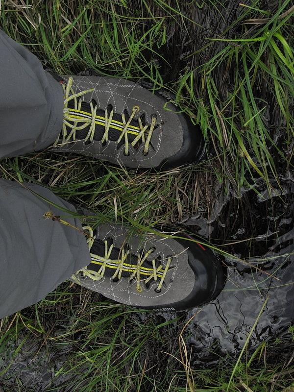 Good for north Pennine bogs, 166 kb