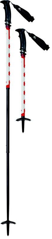 MSR Deploy TR-3 Winter Poles, 15 kb