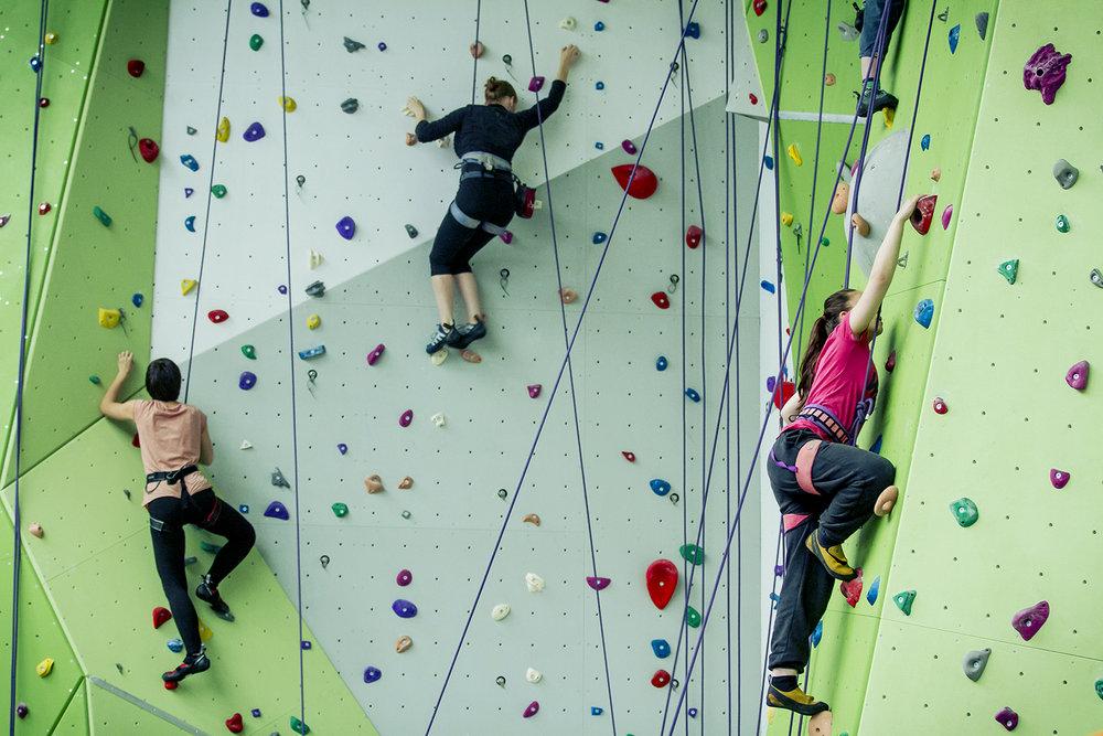 Top Rope Wall, 172 kb