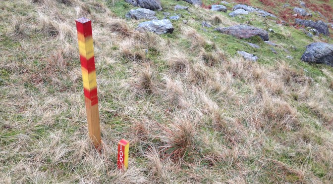 Marker posts in the Llanberis Pass, 120 kb