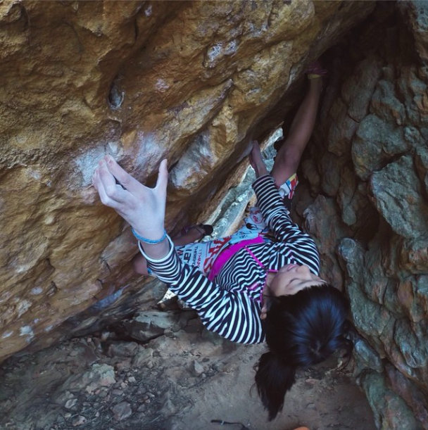 Ashima Shiraishi on Golden Shadow, 8B+, Rocklands, SA, 101 kb