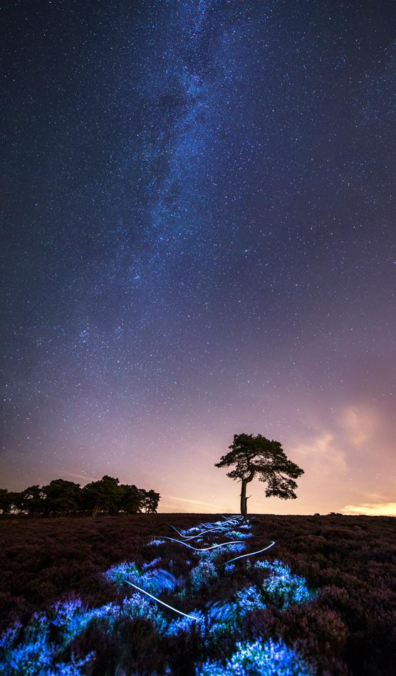 A night time pilgrimage over Longridge Fell , 225 kb