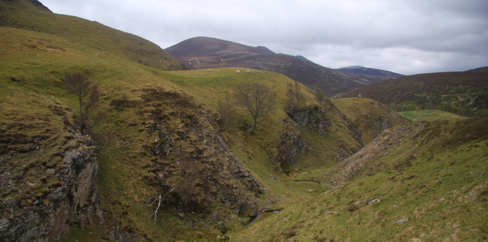 Meall Gaineimh from the approach to Inchrory, 116 kb