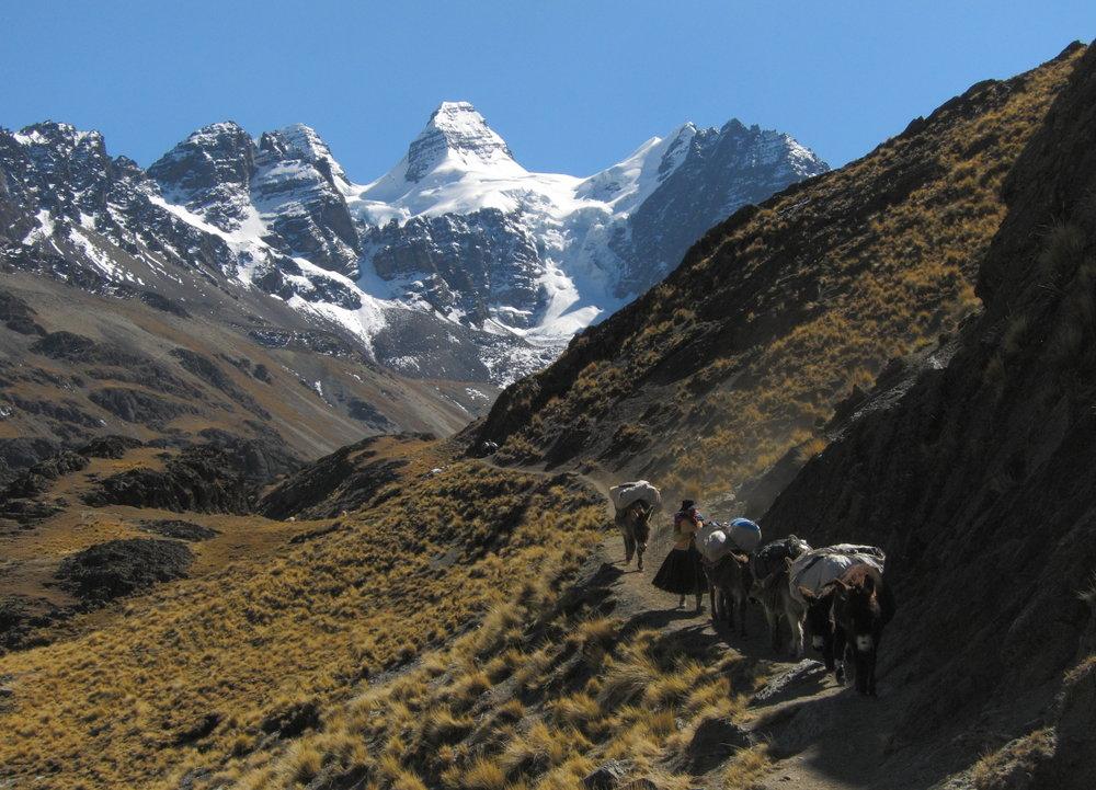 Cholita and her burros, 171 kb