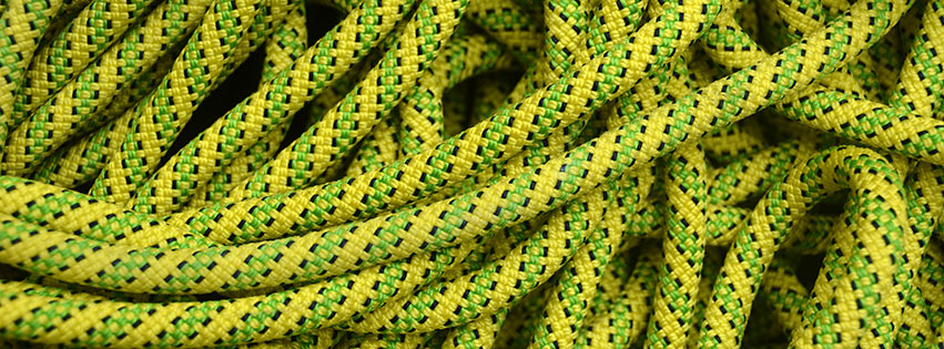 Tendon Ambition close-up, 129 kb
