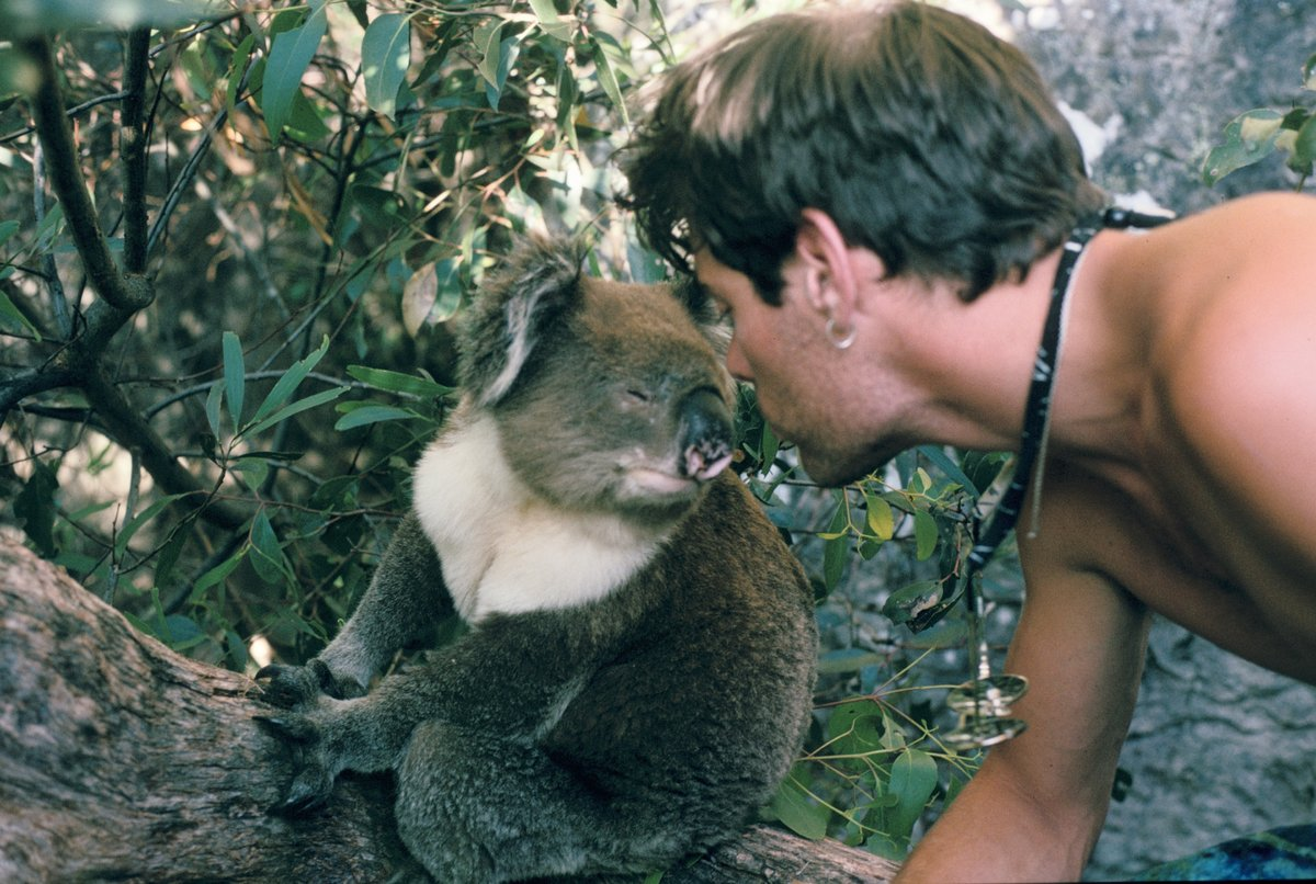Andy makes friends with a koala. (Andy's the one on the right), 191 kb