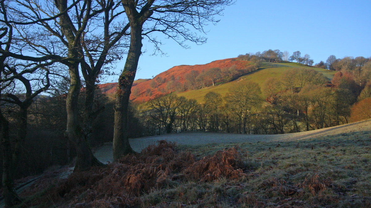 Allt Dolanog on a quiet frosty morning, 211 kb