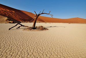 [Hidden Vlei, Namib desert © Robert Durran]
