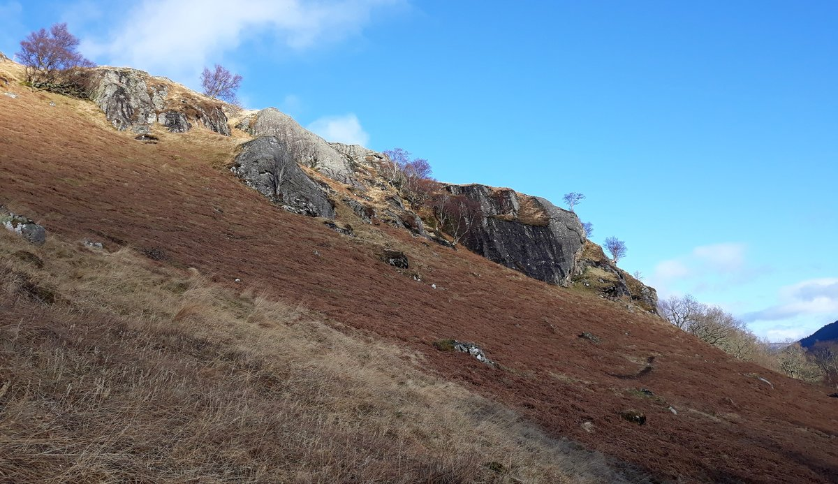 Whaleback Rock (wet streaked, far R) and Sheepback Rock (palest) on emerging from Collie Beag wood. © alan moore