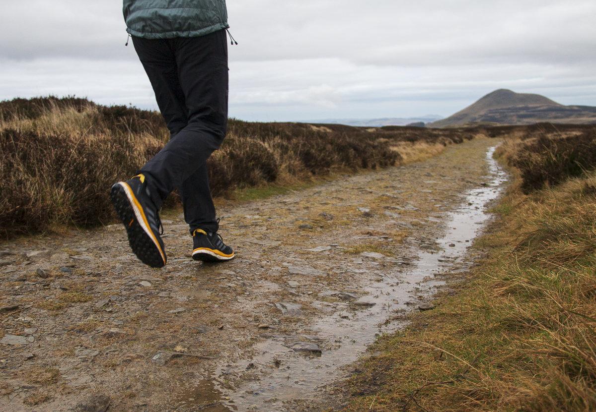 cuello Funcionar hogar  UKC Gear - REVIEW: Adidas Terrex Agravic Flow Running Shoes