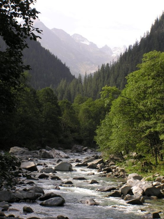 View of the mountains from the bridge into Magic Wood, Switzerland, 100 kb