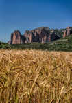 Riglos corn fields