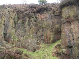 Tameside Minor Quarries