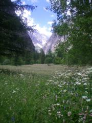 Ailefroide - Alpine meadow on way to slabs