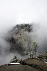 A bleak day at Yosemite Falls
