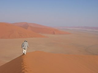 Sand Sea of Tranquility, Sossusvlei, Namibia