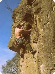 Lovely Dolomitic Limestone