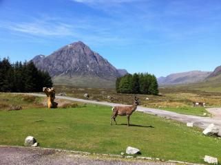 Buachaille Etive Mor from Kingshouse