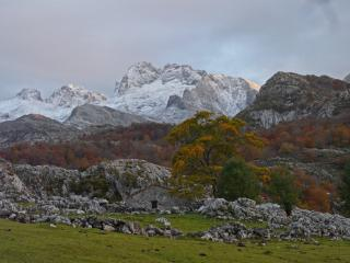 First snows of winter, Picos de Europa. Picu Conhurtau seen from near Llago de Eno