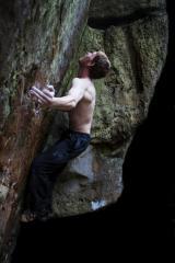 Matt Reeve on Crouching Tiger, Kyloe in the Woods