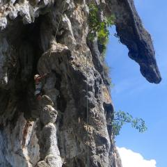 Spider nests and a LOT of insects added to the 360º physical challenge of these stunning rocks
