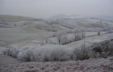 Frost below Willstone Hill