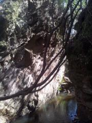 start of wet feet dam cliffs blue mountains