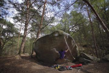 Deux Faux Plis en Plats Reels (7C) - Fontainebleau