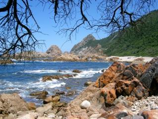 Kranshoek Coastal Trail, South Africa