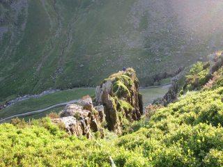 The Dandle Ridge