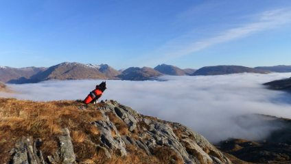 East of Loch Shiel 2013. A freezing cold night.