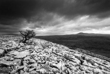 Limestone country, 190 kb