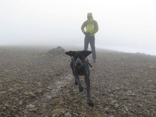 Mr TC and Lotta the dog on Raise summit