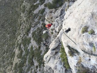 Looking down pitch 1 of Aristotle