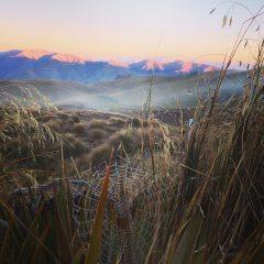 Snow Farm on a chilly sunrise, 136 kb